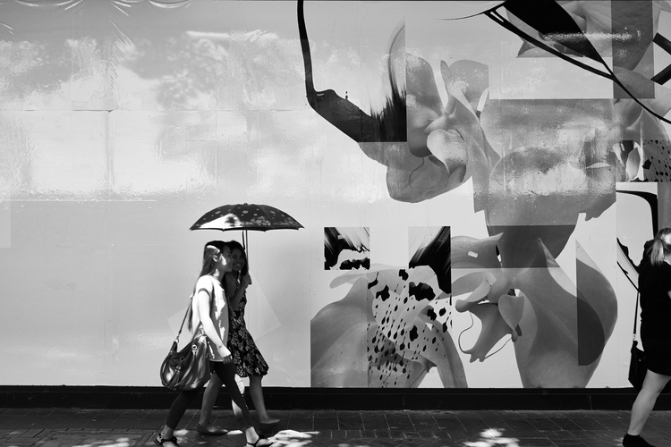 Untitled (Untitled photo) 11/02 - theoriginaljingles | ello