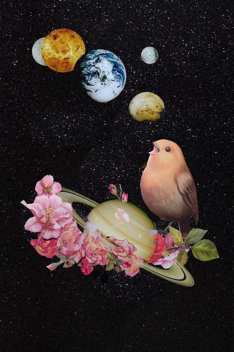 digitalcollage, bird, universe - franalvez | ello