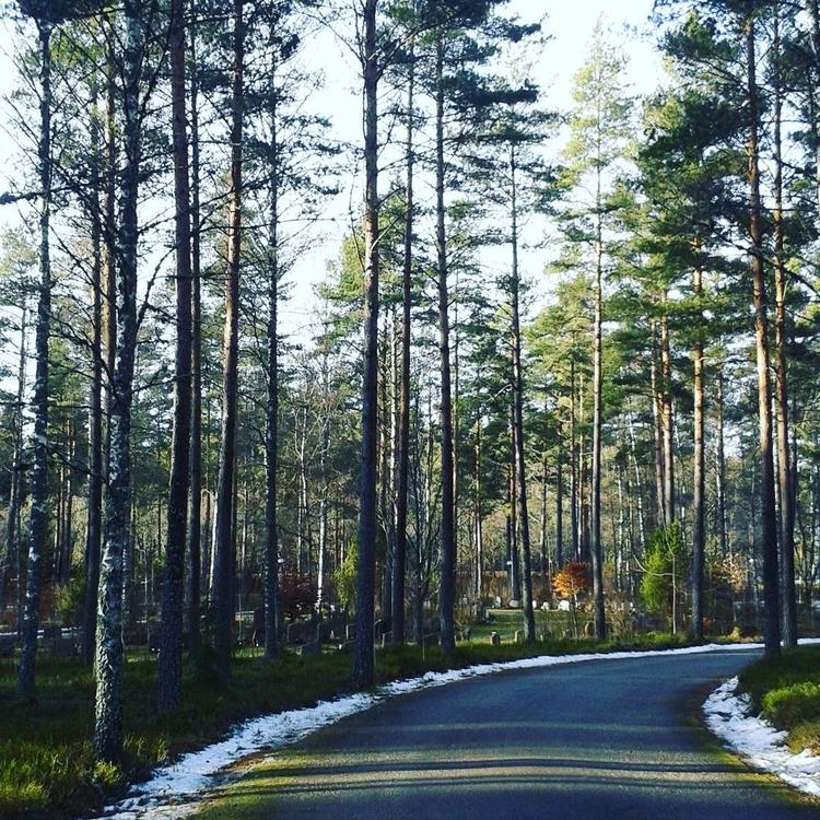 Skogskyrkogården Eksjö Svenska  - skogskyrkogardar | ello