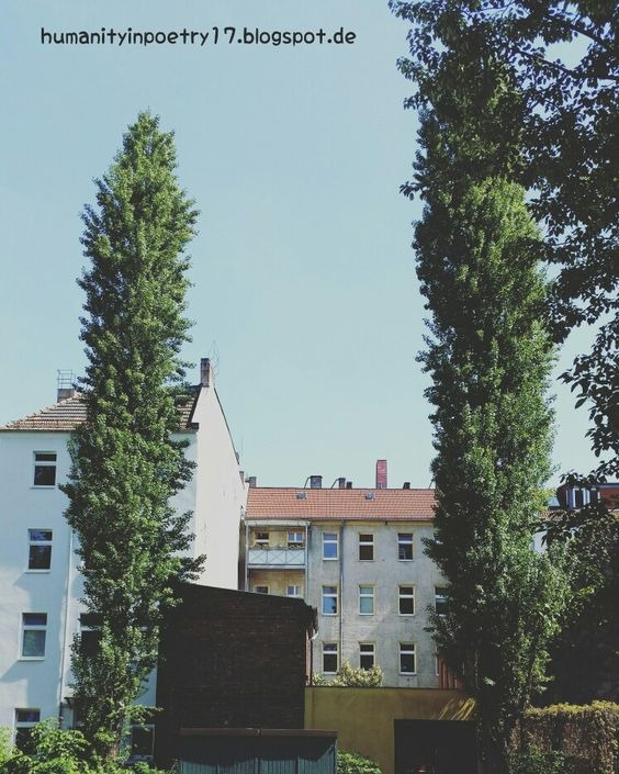 Fall - urban, urbanart, urbanoutfitters - humanityinpoetry | ello
