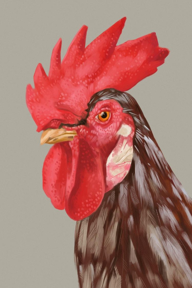 rooster / painting dinner - digitalpainting - mrbraintree | ello