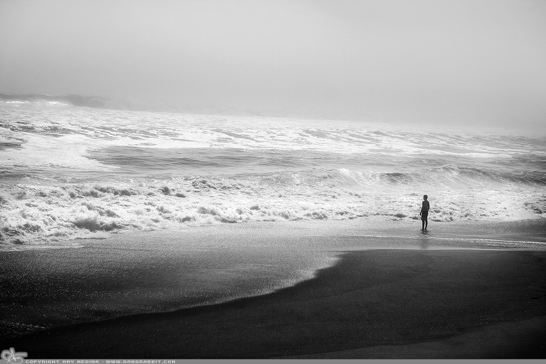 Watch Love waves mist... (PAD p - dangrabbit-photography | ello
