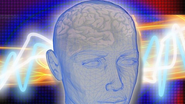 Científicos conectan cerebro hu - codigooculto | ello