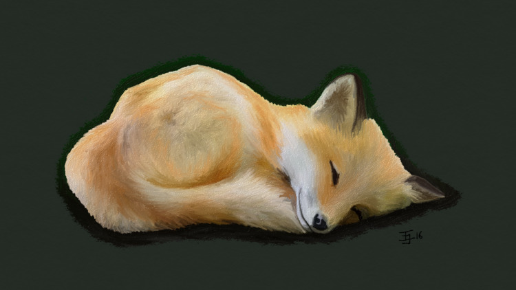 Sleeping Fox - astridthecrafty | ello