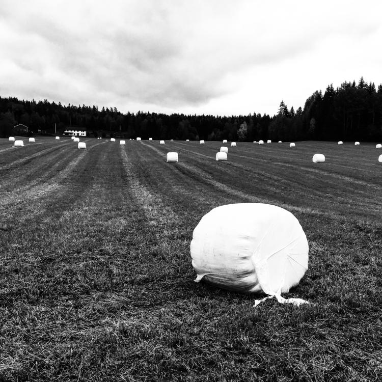 Art installation farmers autumn - stigergutt | ello