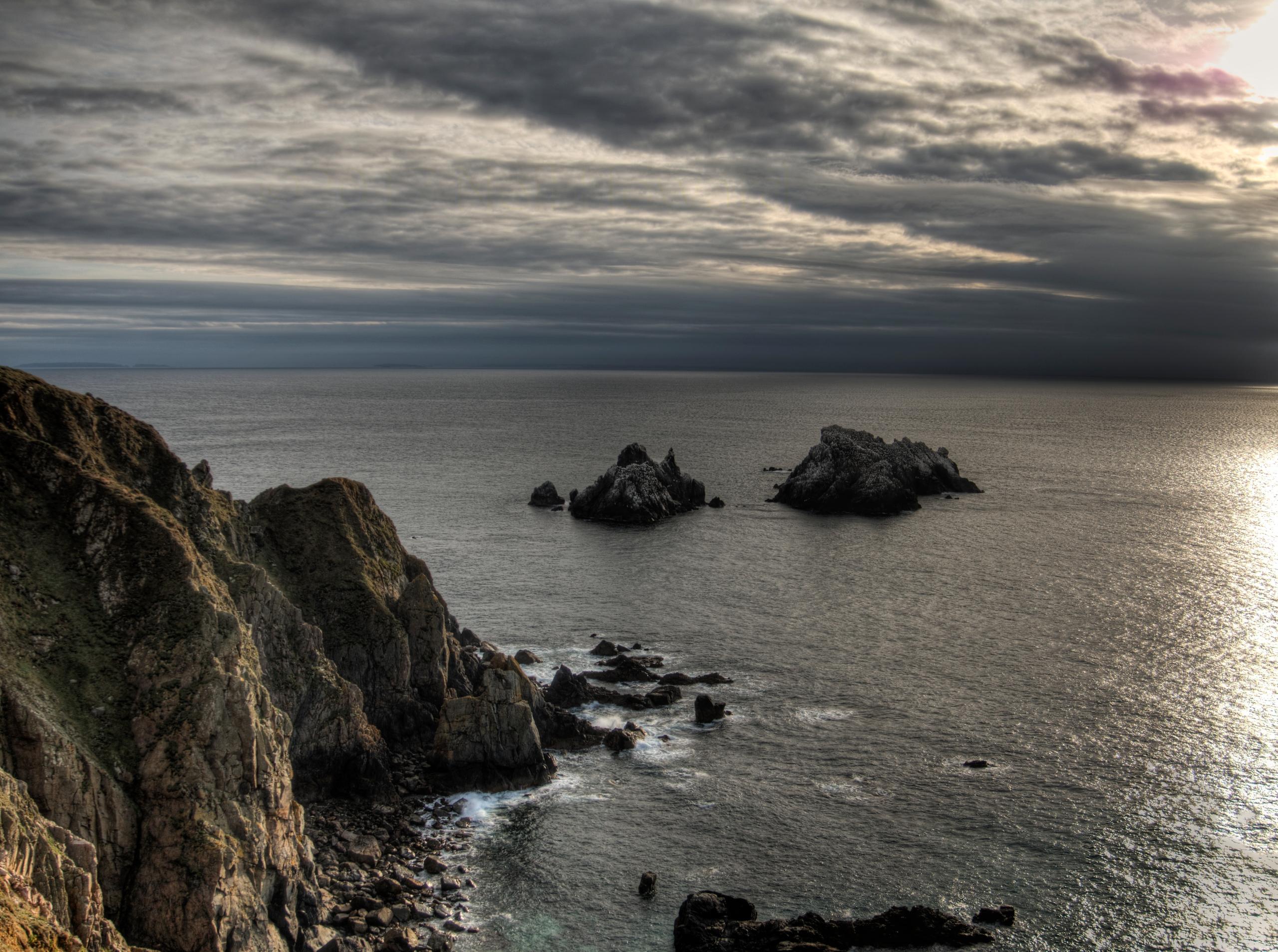 Gannet Rocks - Alderney gannet  - neilhoward   ello