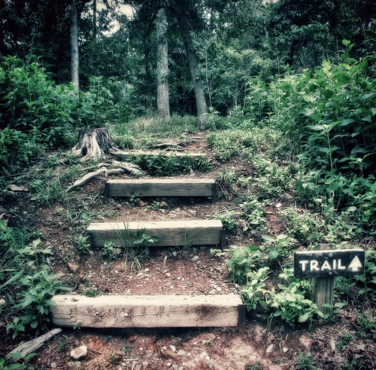 Trail Morrow Mountain - jasonlowder-project | ello