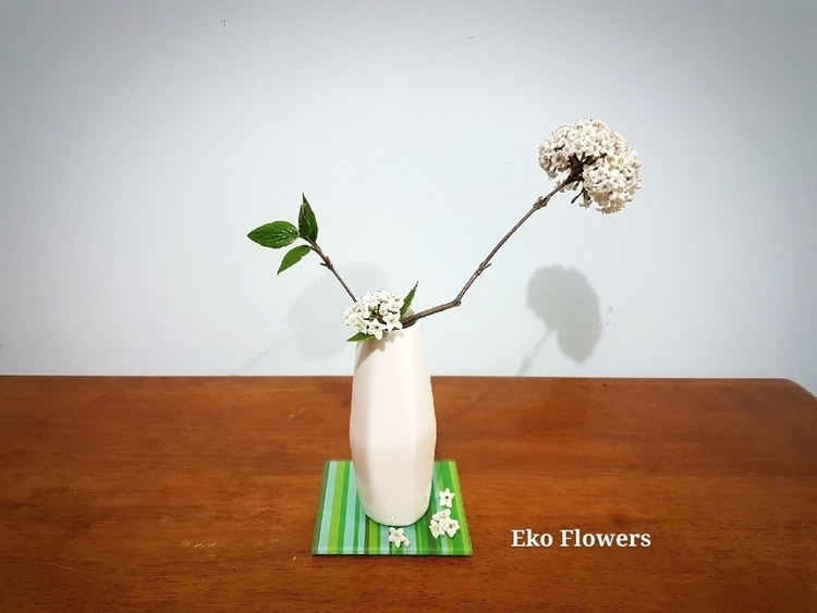 room filled White Ixora fragran - ekoflowers | ello