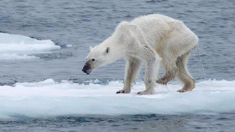 NASA ya investigará el Clima: T - codigooculto | ello