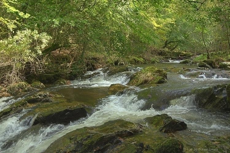 Stream Dartmoor (HDR) - 001 - stream - paulgillard | ello