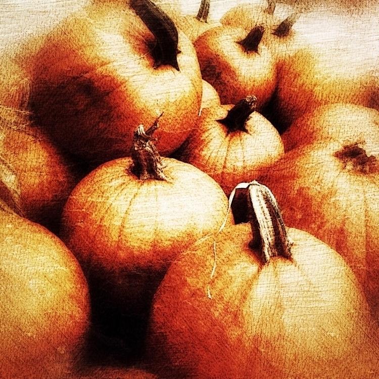 season… | [Ello](http://ello.co - photografia | ello
