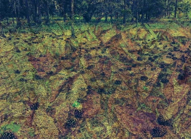 Disturbed Nature Pamir Kiciman  - wabi__sabi | ello