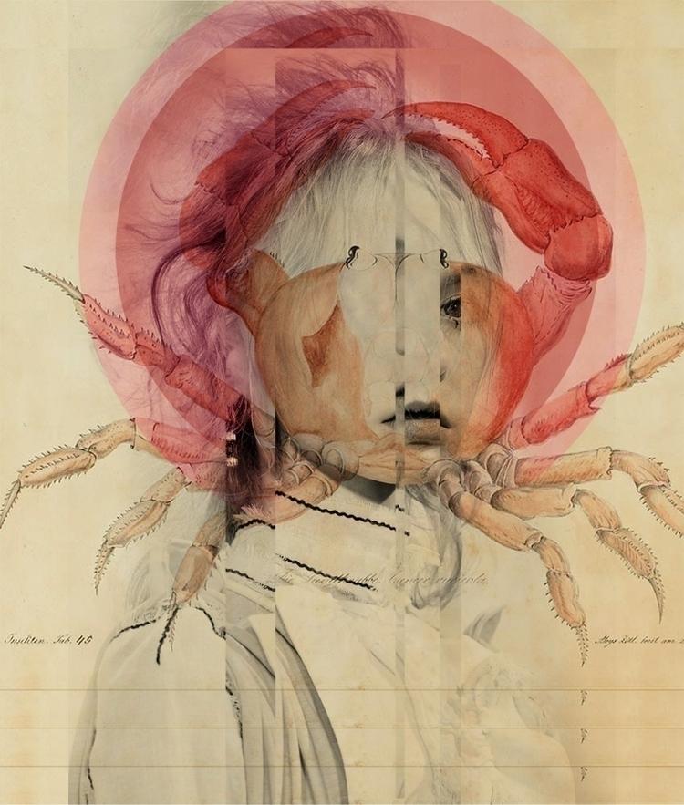 vision, oceanlife, crablady - a_collage   ello