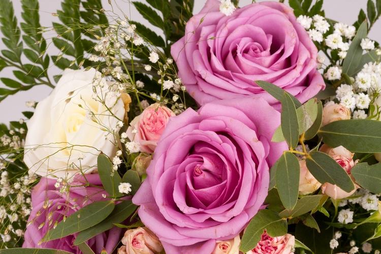 flowers Flower - bemyflower | ello