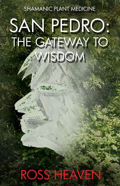 excerpt San Pedro: Gateway Wisd - moon-books   ello