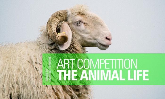 participate  - WorldAnimalDay, Animal - artlimited | ello