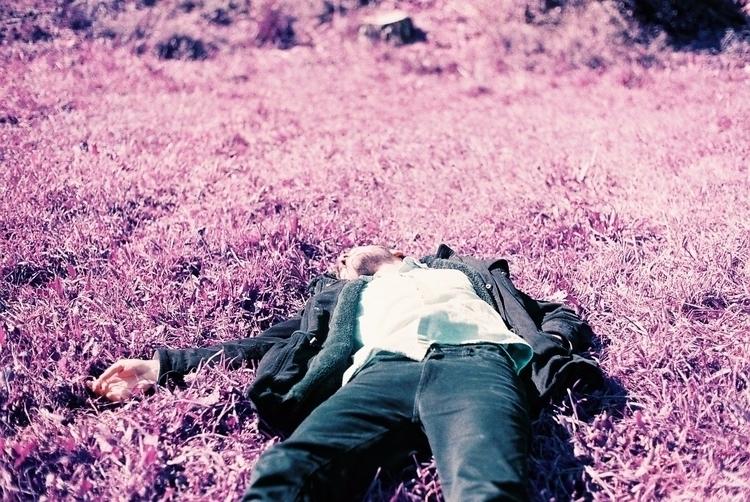 lomochrome, film, 35mm, purple - wildmild | ello