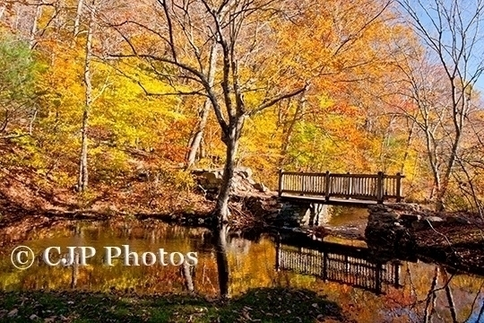 bridge Chatfield Hollow Killing - cjpphotos | ello