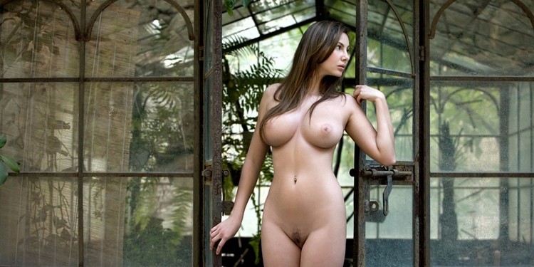 naked, boobs, tits, brunette - guermo   ello