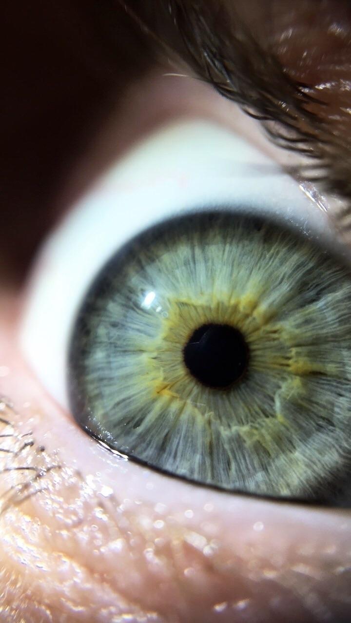 eyes craters - macro, eye, crater - wildmild | ello