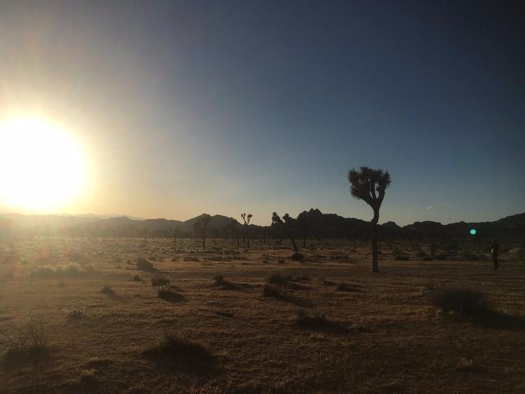 Location scouting Nevada-Califo - riceunderwater | ello