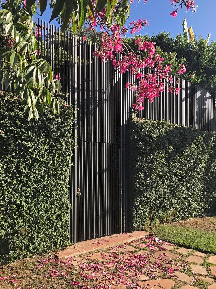 Pink Flowers, Metal Gate, Silve - odouglas | ello