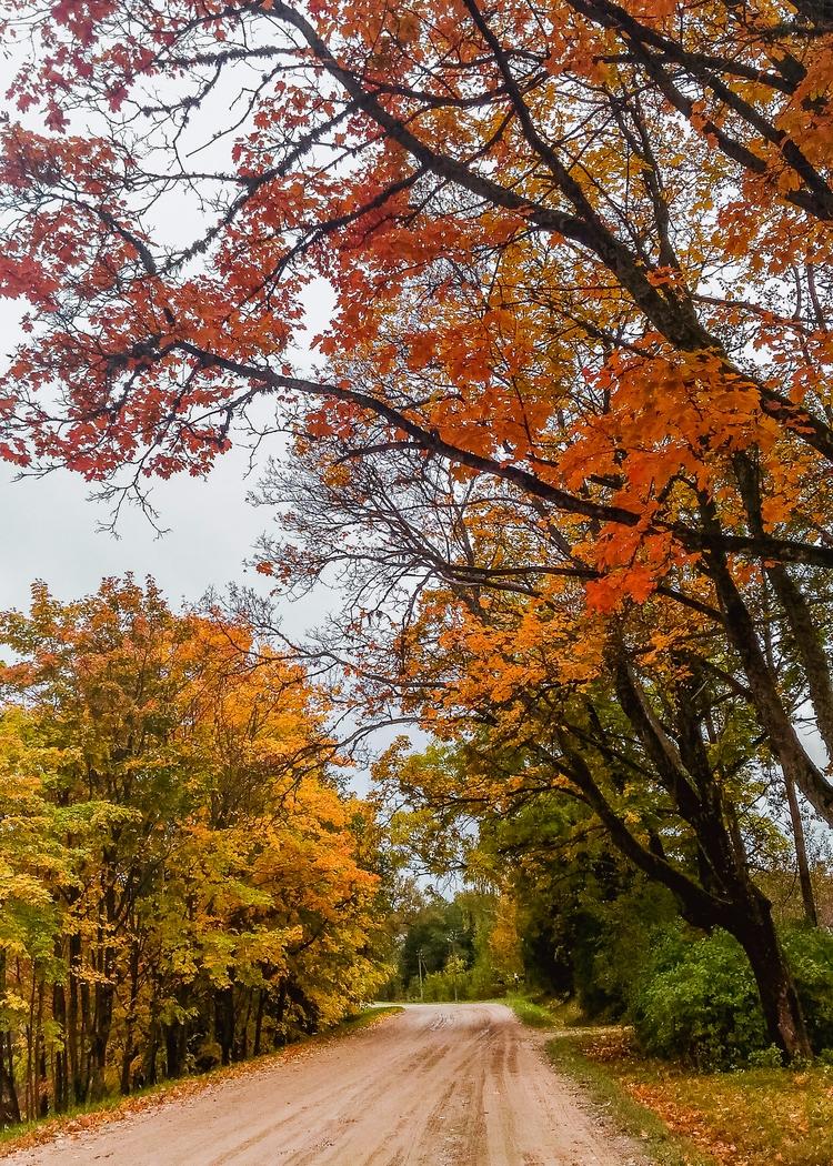 tilžė, lithuania, landscape, landscapelovers - beheroght | ello