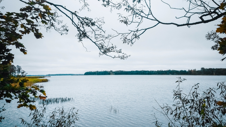 drūkšiai, lake, nature, lithuania - beheroght | ello