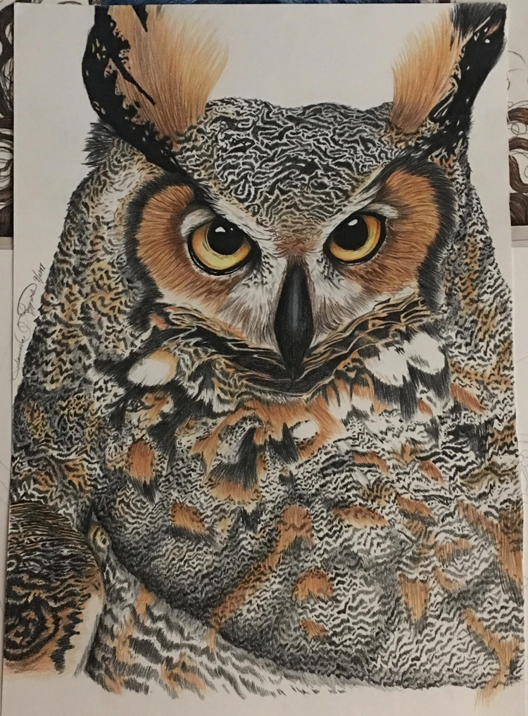 Finally finishing drawing owl.  - crayola4kids | ello