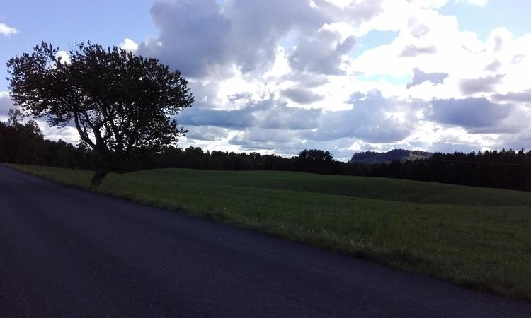 South Wättern.se ~ af - TreeArt - mellyrn | ello