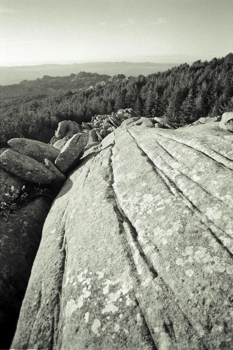 Italian lines nature - photography - nonophuran | ello