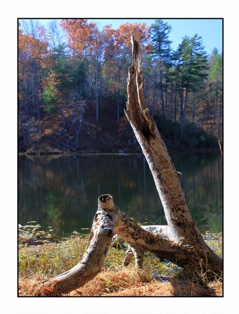 Otter Lake, Blue Ridge Parkway - etbtravelphotography | ello