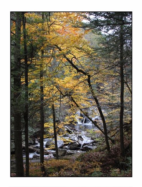 Falls Colors, Kent State Park,  - etbtravelphotography | ello