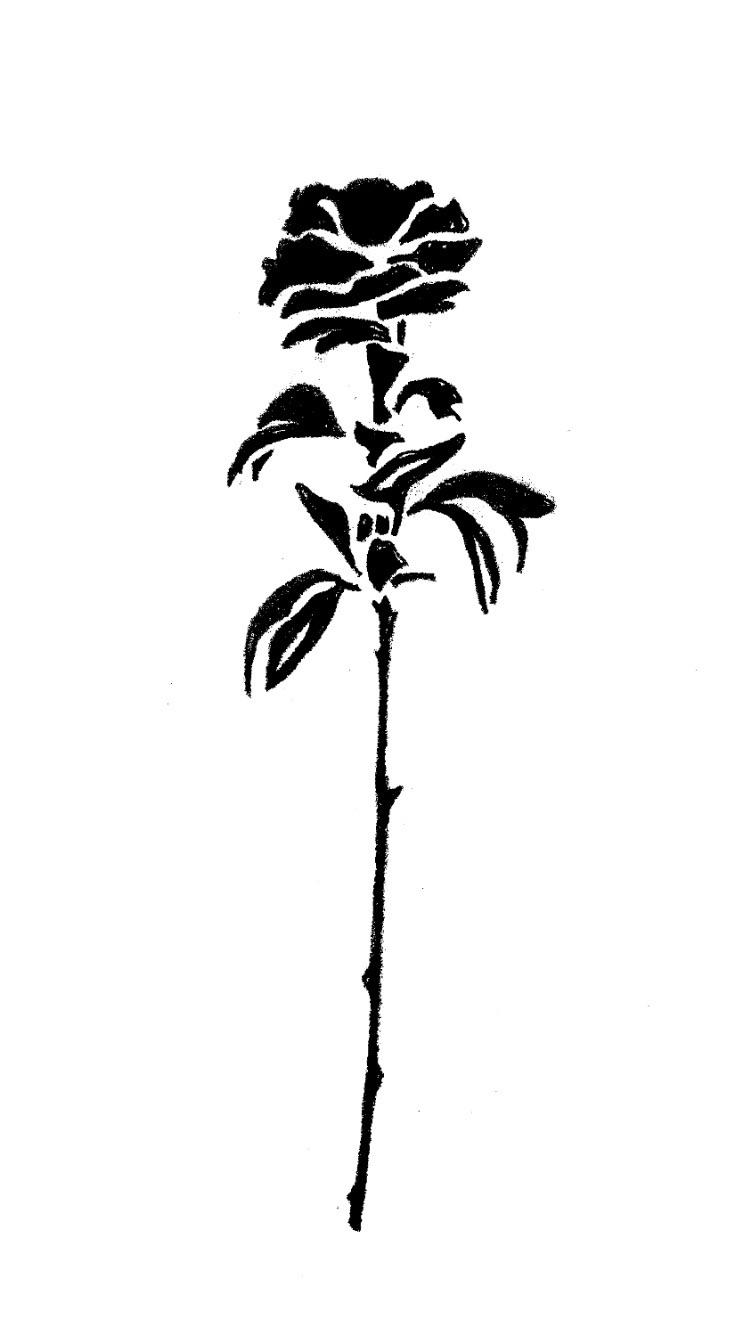 rose illustration - illistration - christianrobn | ello