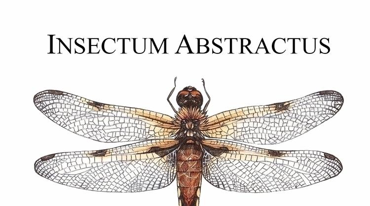 Insectum - originates Latin, tr - sacruna | ello