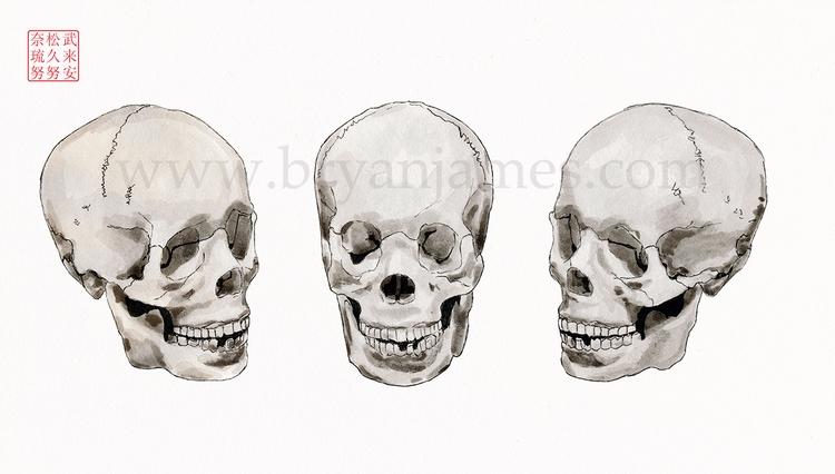 Skulls - ink paper - bryanjamesart | ello