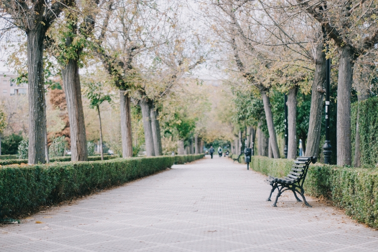 Granada, Spain - mariajuarez   ello
