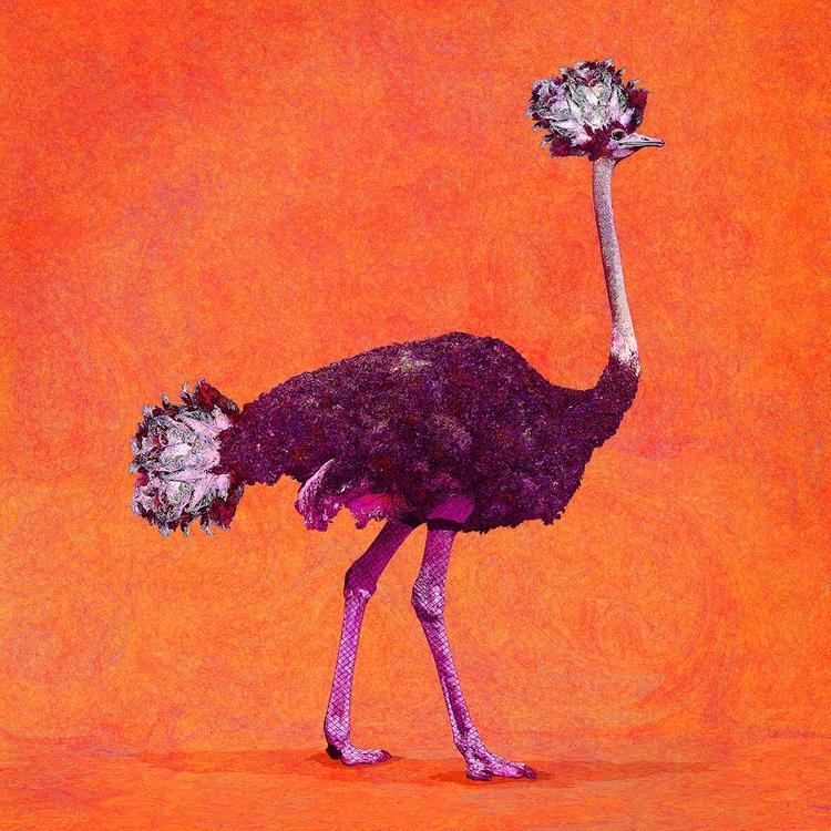 ILLUSTRATION - Ostrich 200 cm 7 - comoyoti   ello