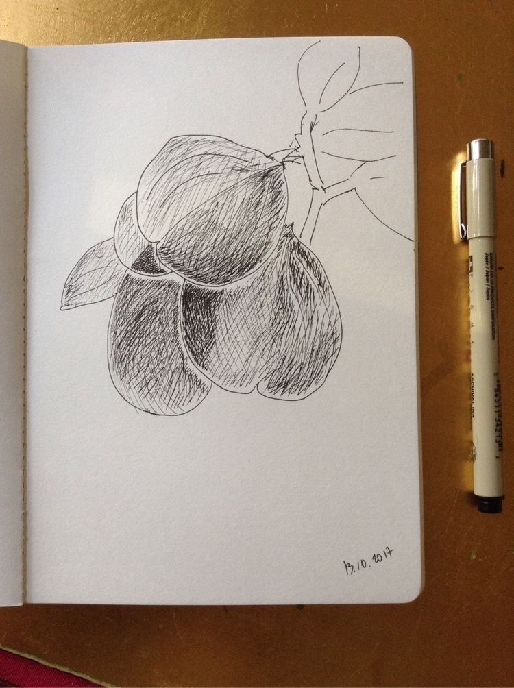 sketching, inktober, findingcreativeflow - anna_bki   ello