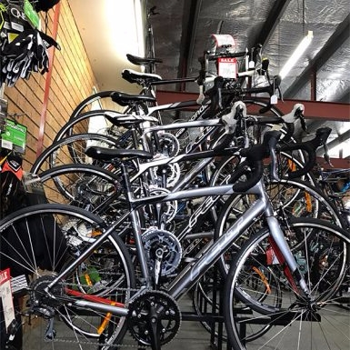 Bicycle store Beresfield, sale  - steadcycles | ello