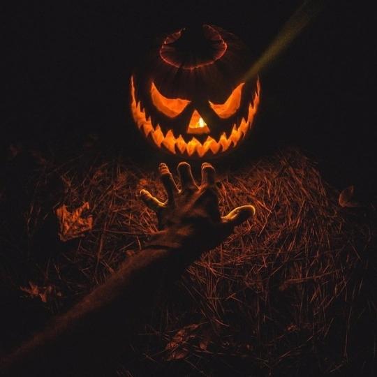 halloween - ellohorror | ello