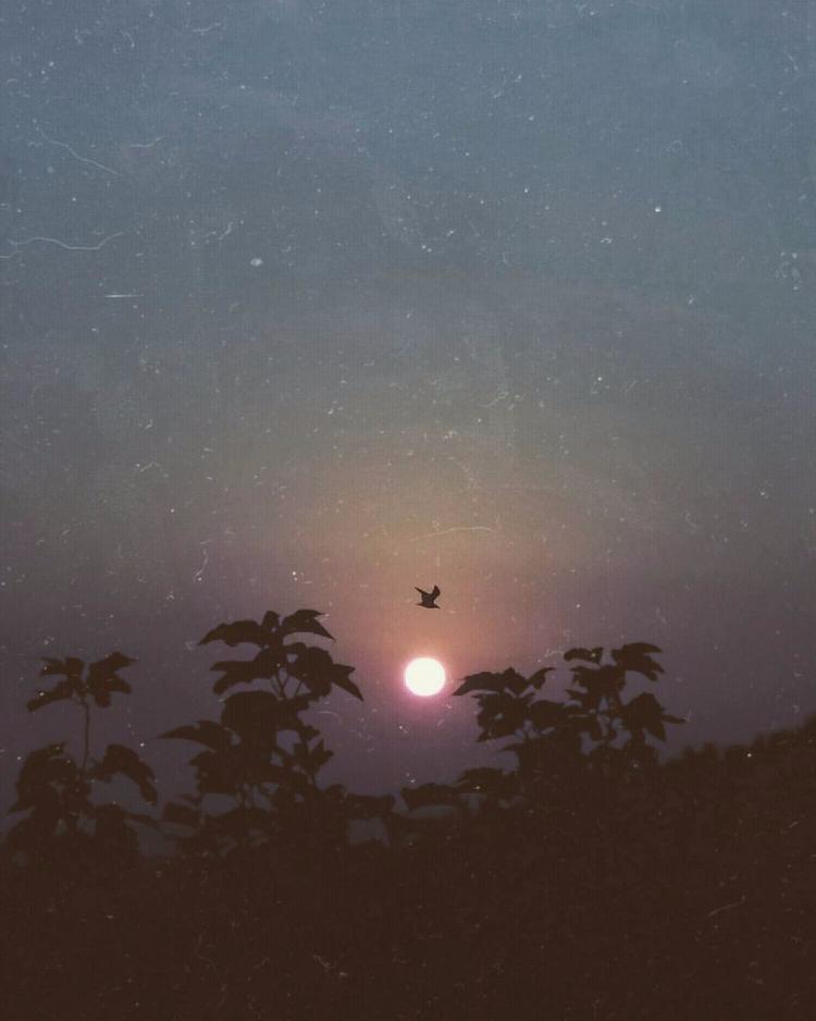 sunset, ellophotohraphy, melancholy - domiprim | ello