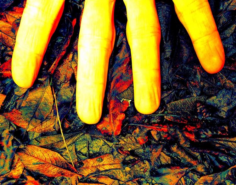 REALMS - artphotography, artpoetry - johnhopper | ello