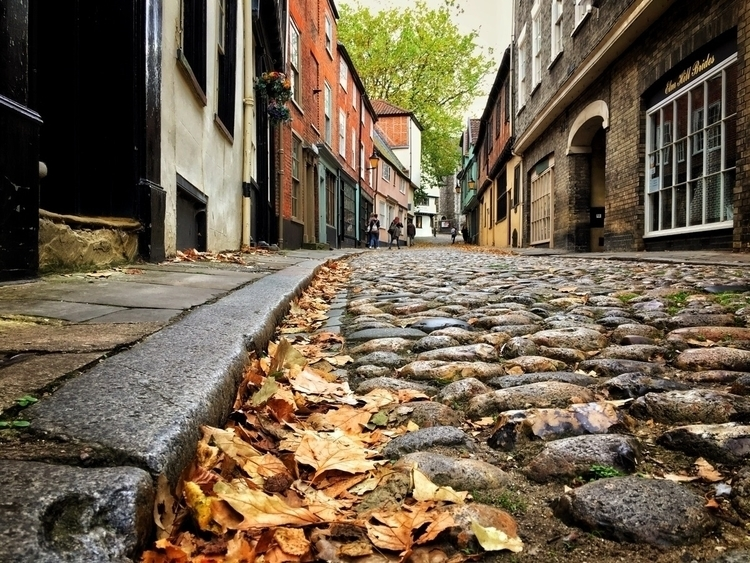 Elm Hill, Norwich - street, leaves - davidhawkinsweeks | ello