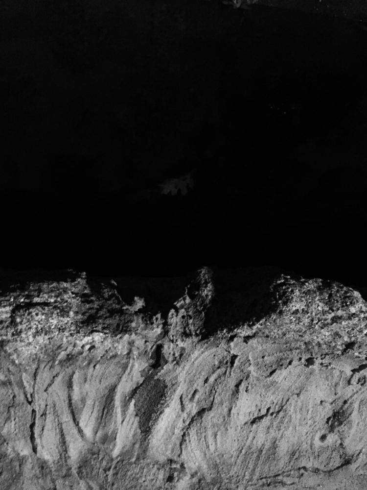 brunonunessousa Post 16 Oct 2017 19:19:06 UTC | ello