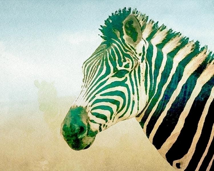 Zebra Mist print - kokabella   ello
