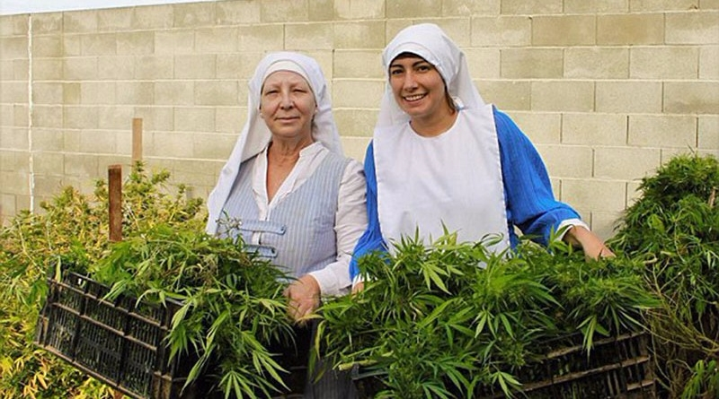 Nuns growing marijuana pray div - ministryofcannabis | ello