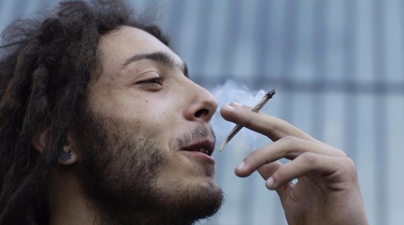 Study proves cannabis anxiety d - ministryofcannabis | ello