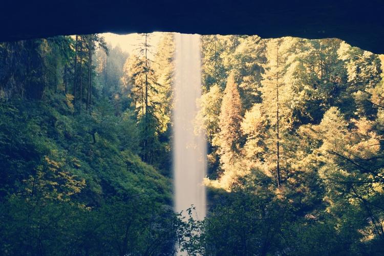 waterfall. Silver Falls State P - cokes | ello
