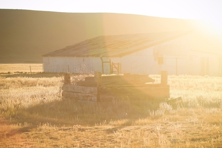 Day Ranch Road Trip. Bright ear - katatonic | ello
